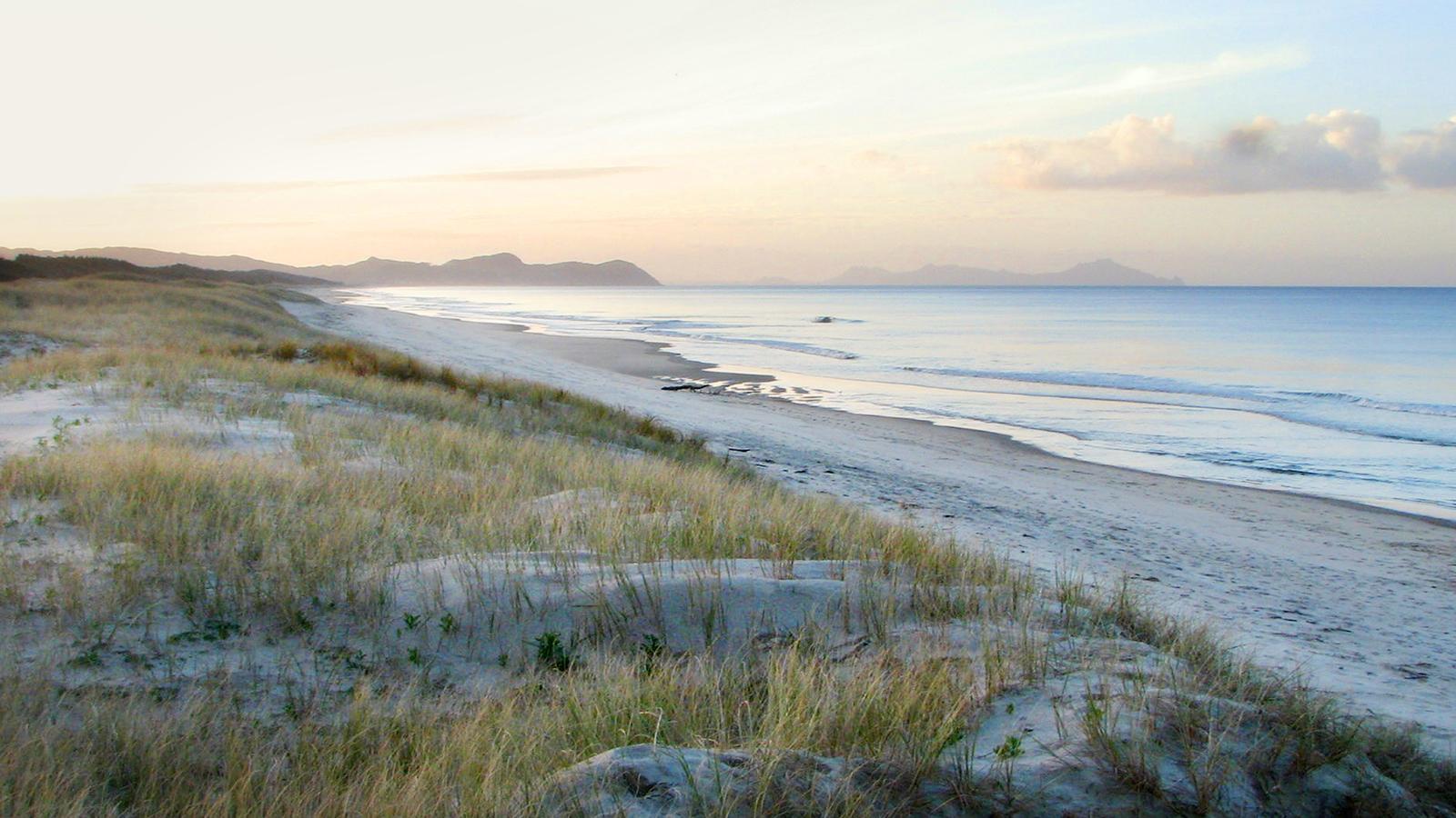Te Arai Dunes